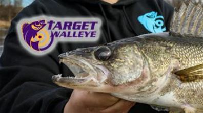 Spring Walleye Fishing Tips, VISIT TARGET WALLEYE.  Click Picture below.